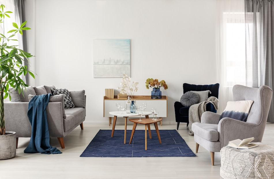 Top 5 Complementary Interior Design Combinations Cobus Spaces